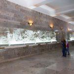 عجز و درماندگیِ تمام معمارانِ زبان فارسی در برابر فردوسی/ محمدرضا شفیعی کدکنی